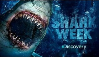shark-week-discovery