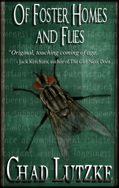 Of Foster Homes and Flies final cover with Ketchum blurb